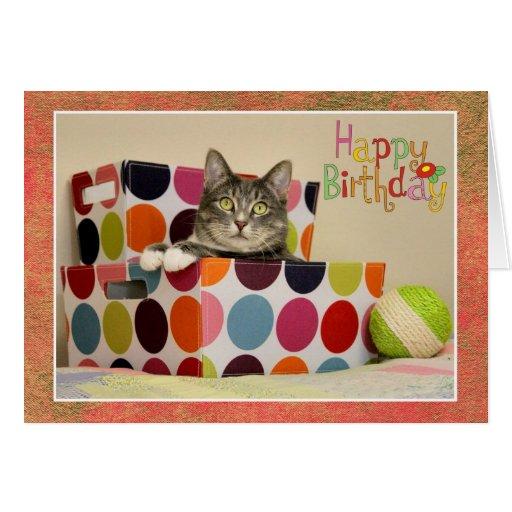 Feliz cumpleaños con la tarjeta linda del gato