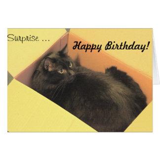 ¡Feliz cumpleaños de la sorpresa…! Tarjeta De Felicitación