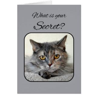Feliz cumpleaños del gato gris y anaranjado de la tarjeta