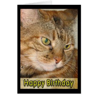 feliz cumpleaños del gato tarjetas
