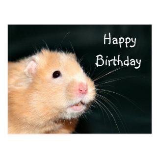 Feliz cumpleaños del hámster postal