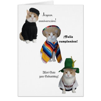 Feliz cumpleaños divertido del gato/del gatito en tarjeta de felicitación