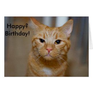 ¿Feliz? ¡Cumpleaños! (Este gato parece gruñón) Tarjeta De Felicitación
