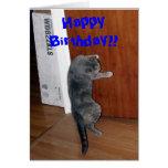 ¡Feliz cumpleaños!! Felicitaciones