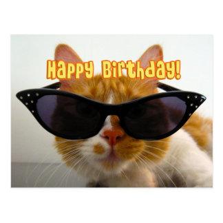 Feliz cumpleaños - gato fresco en postal de las