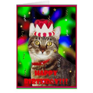 Feliz+cumpleaños+gato Tarjeta De Felicitación