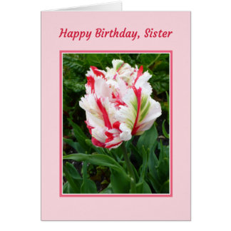 Feliz cumpleaños, hermana tarjeta de felicitación