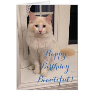 Feliz cumpleaños hermoso - gato rojo de Ragdoll Tarjeta