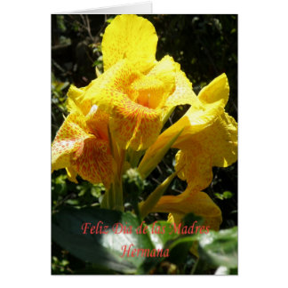 Feliz dia de las madres Hermana Tarjeta De Felicitación