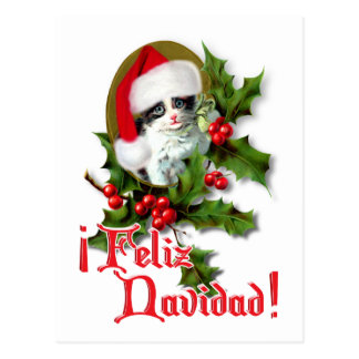 Feliz Navidad - gatito del navidad Postal