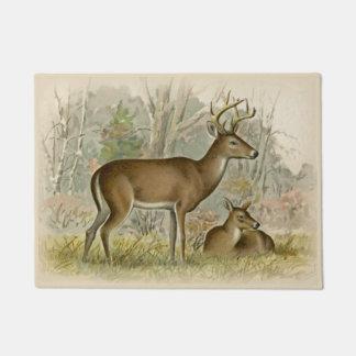 Felpudo dólar Blanco-atado de los ciervos - ilustracion