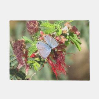 Felpudo Mariposa azul marina