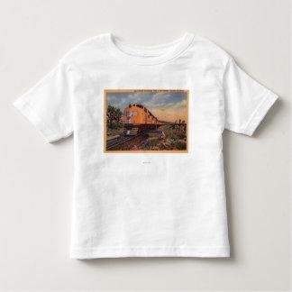 """Ferrocarril pacífico """"ciudad de la unión de Los Camiseta"""
