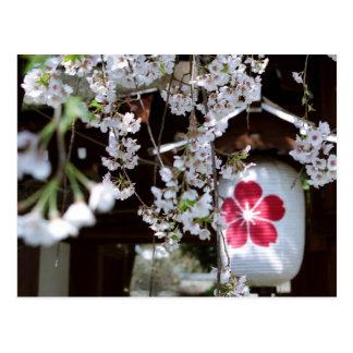 Festival de la flor de cerezo en Kyoto Postal