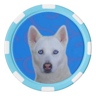 Fichas de póker blancas de la arcilla del husky