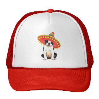 Fiesta Boston Terrier Gorra