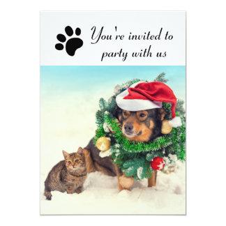 Fiesta con nosotros perro y gato - invitación de