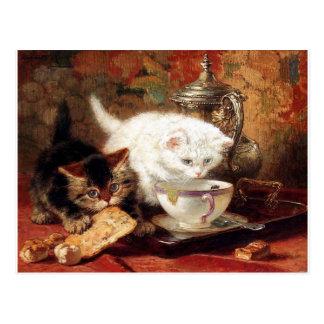 Fiesta de merienda-cena de los gatitos postal
