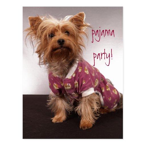 Fiesta de pijama de Yorkie Postales