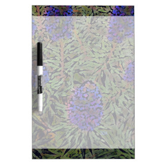 Filas de la planta púrpura Del Mar de la lavanda Pizarras Blancas