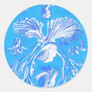 Filicinae en fondo azul pegatina redonda