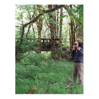 Filón y papá en el puente cubierto de musgo postal
