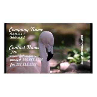 Flamenco rosado dulce plantilla de tarjeta de negocio