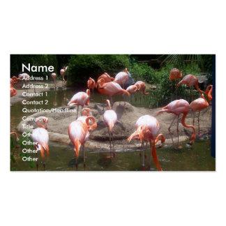 Flamencos rosados tarjetas de visita