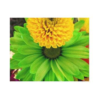 Fleur Verte Lona Estirada Galerías