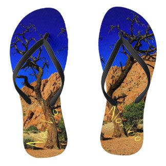 Flips-flopes namibianos del árbol del paisaje chanclas