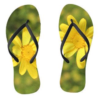 Flips-flopes soleados y positivos de la flor chanclas