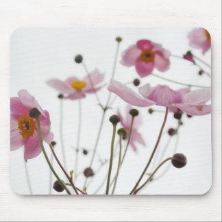 flor alfombrilla de ratón