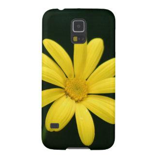 Flor amarilla de la margarita funda galaxy s5