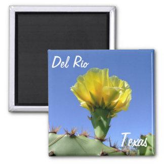 Flor amarilla del cactus de los recuerdos de Del R Imán Cuadrado
