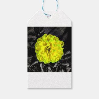 Flor amarilla etiquetas para regalos