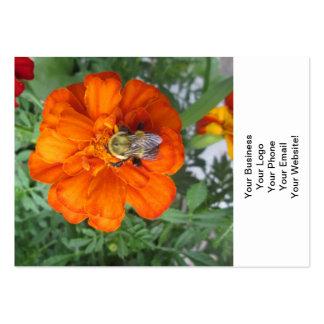 Flor anaranjada de la abeja de la maravilla tarjetas de visita grandes