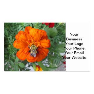 Flor anaranjada de la abeja de la maravilla plantilla de tarjeta personal