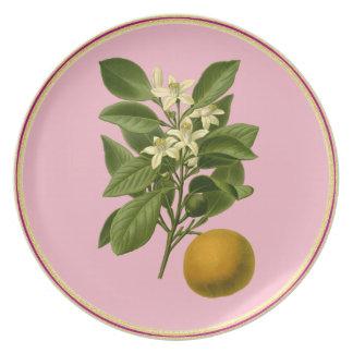 Flor anaranjado y fruta-en la placa rosada de la plato