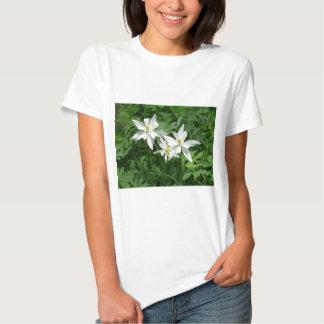 flor blanca de la montaña camisas