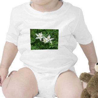 flor blanca de la montaña trajes de bebé