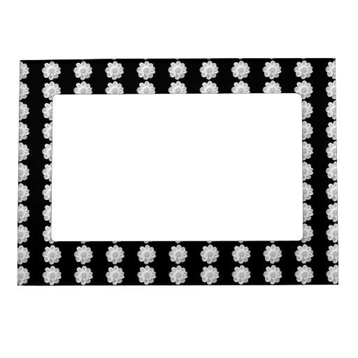 Flor blanca en fondo negro marcos magnéticos