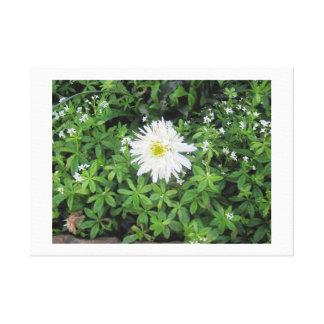 Flor blanca en las montañas impresion en lona