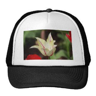 Flor blanca gorras
