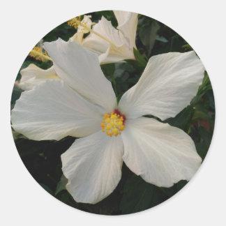 Flor blanca pegatina redonda