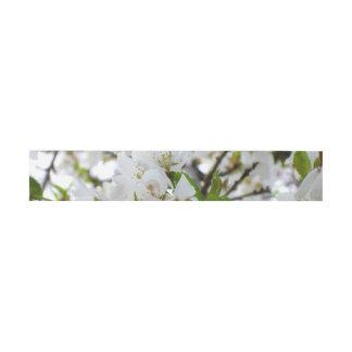 Flor blanco cintas para invitaciones