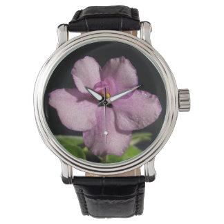 Flor bonita de la violeta africana reloj de mano