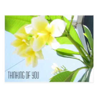 Flor brillante que piensa en usted postal
