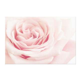 Flor color de rosa rosa clara - flores de los impresiones de lienzo