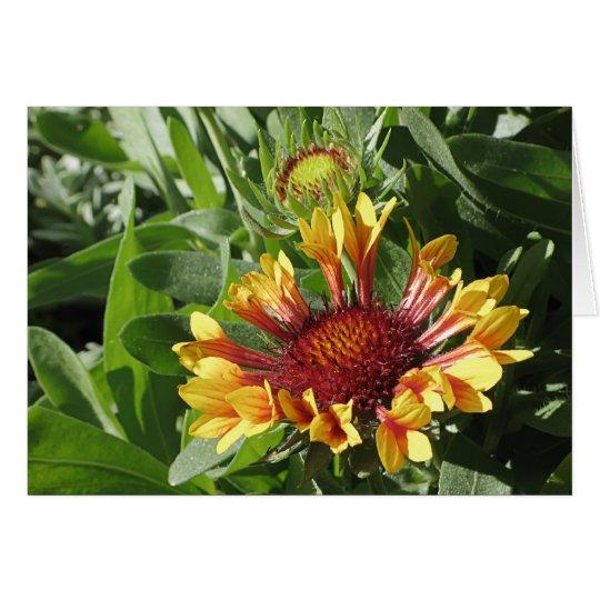 Flor combinada de la fanfarria tarjeta de felicitación