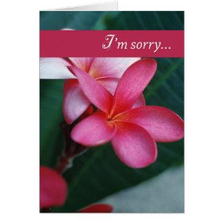 Flor de 3747 disculpas tarjeton